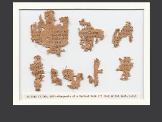 The Tebtunis Papyri Collection and the Advanced Papyrological Information System Project at The Bancroft Library P.Tebt. 689