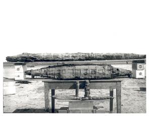 mummified crocodiles at Tebtunis_EES Hunt