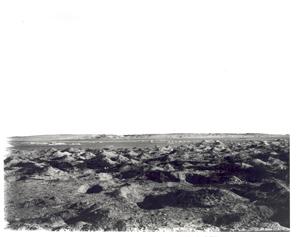 Tebtunis cemetery 1899-1900