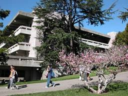 Moffitt Library, University of California, Berkeley